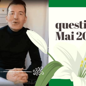 questions de mai 2020